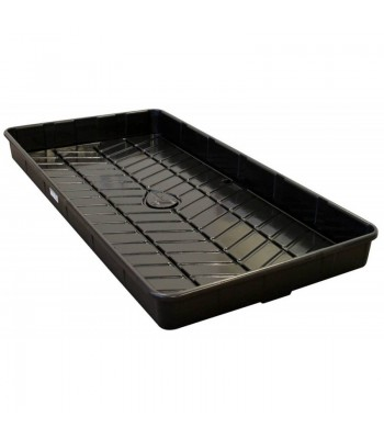 Rockwool Tray