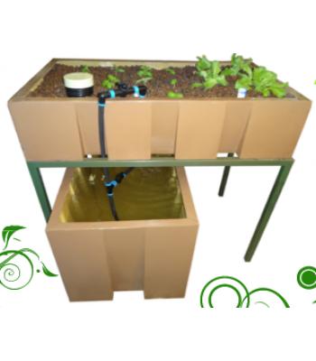 AquaEco System – 250L Aquaponics